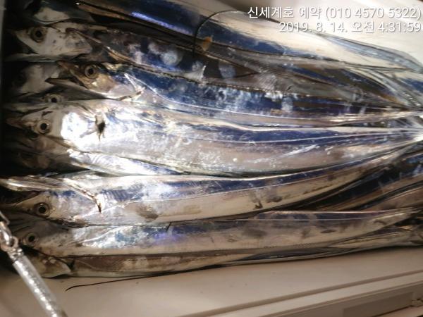 d34b68d2e43cee61532e4a987c35bc12_mini.jp