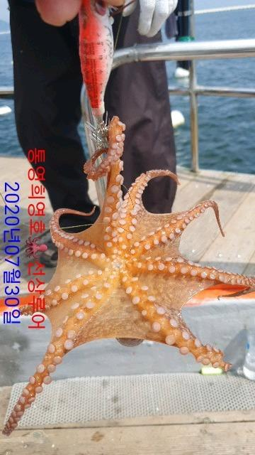 DateCamera0730103300.jpg