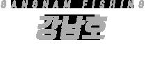 강남호 하단
