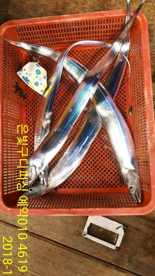 2751228e347a3865789b8b9ae1a4351b_mini.jp